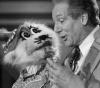 """Verschoben auf 20.09.2020: Perry Paul und """"Mauskatze"""" Amadeus"""