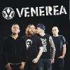 Making Friends Live Special: Venerea (SWE) & Straightline (D)