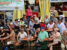 Hahnweide Oldtimer-Fliegertreffen 2013_364