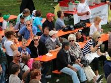 Hahnweide Oldtimer-Fliegertreffen 2013_474