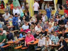 Hahnweide Oldtimer-Fliegertreffen 2013_475