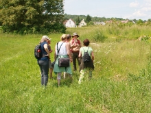 Wildkräuterspaziergänge mit der Kräuterpädagogin Simone Kerner.