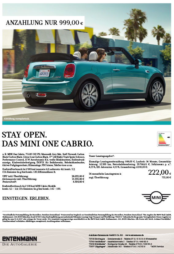 BEE Web MINI One Cabrio A AngBlatt